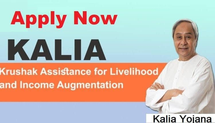 Kalia yojana Application Status
