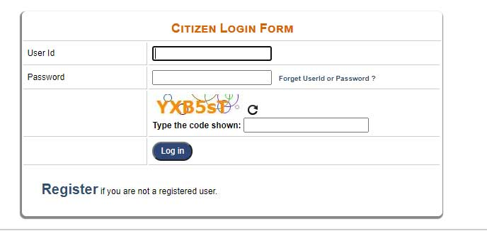 ration card delhi  apply online